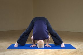 Prasarita_Padottanasana_Wide_Legged_Forward_Bend_1
